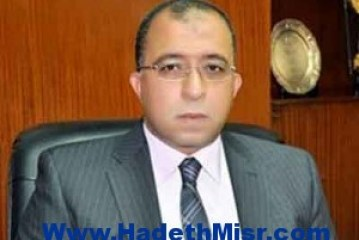 مشروعات تعاون مستقبلية بين مصر واليابان