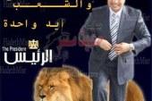"""اليوم ..افتتاح المقر الرئيسي لحملة """"المشير """" الانتخابية بسوهاج"""