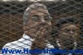 محاكمة عصام سلطان بتهمة سب حرس محكمة شمال الجيزة اليوم