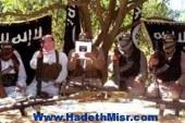 مصادر: مقتل مسئول الكيمياء بأنصار بيت المقدس في القليوبية