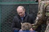 بوتين : الخيار العسكري لا يزال مطروحا في اوكرانيا لحماية مصالحنا و حماية السكان الاوكرانيين