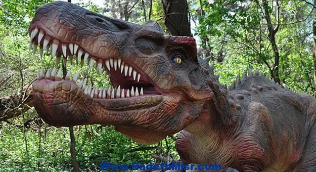 اكتشاف بقايا ديناصورات فى السعودية