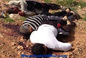الأقباط في ليبيا.. معاناة تستمر.. .. وإرهاب يتمادى