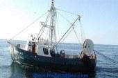بدء التحقيق فى وفاة 6 صيادين على متن مركب صيد جنوب البحر الأحمر