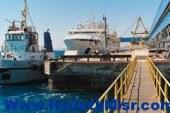 """نجاة السفينة """" دونا بلو زوسر """" المحملة بعدد 63 ألف طن قمح بميناء سفاجا"""