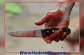 اخوانى يطعن زوجة لواء شرطة بسكين بالغربية
