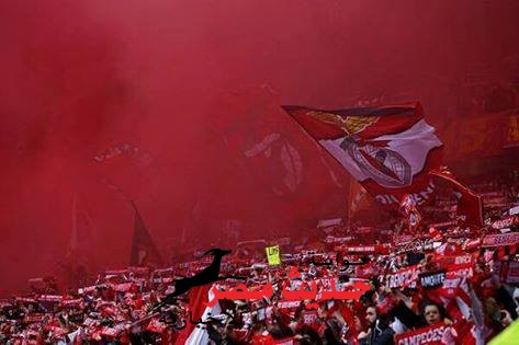 نادي نفيكا بطلاً للدوري البرتغالي للمرة 33 في تاريخه