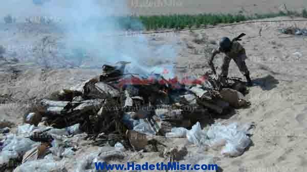 نيابة الغردقة الكلية تحرق 21 طن بانجو بالمدفن الطبى جنوب الغردقة