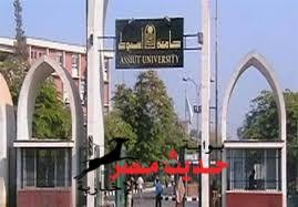 منحة متكاملة لطلاب وخريجي جامعة اسيوط
