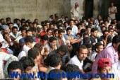 أمن مطروح يقبض على 132 مصريًا و 26 أجنبيا قبل تسللهم لليبيا بسيوة