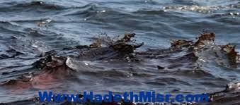 شئون البيئة بالبحر الأحمر ترصد بقعة زيتية بالقرب من بعض الشواطئ السياحية