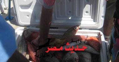 إختتام فعاليات بطولة الجمهورية لصيد الأسماك بالبحر الأحمر