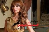 بلاغ للنائب العام ضد أحمد عز لسبه زينة