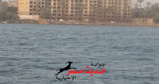 لكى الله يا مصر..تأجيل هدم ابراج قرية الواسطى باسيوط لاجل غير مسمى