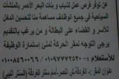 تمرد البحر الاحمر تعلن عن وظائف عمل لشباب وبنات البحر الاحمر