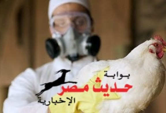 وفاة سيدة واحتجاز طفلة مشتبه فى إصابتهما بأنفلونزا الطيور بالفيوم