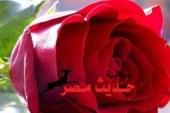 يظل الورد هدية قيمة ورومانسية، يمكن تقديمها فى جميع الأوقات