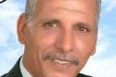 النائب عبد الفتاح محمد: لابد من قانون لمواقع التواصل يكون منظما لا مانعا .