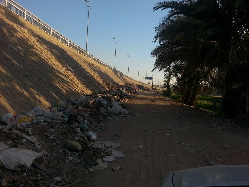 أراضى جزيرة الواسطى حائرة بين الفتح ومركز أسيوط