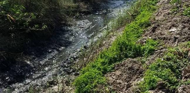 تغيير المناخ تتوقع نقص مياه النيل بمعدل 50% بحلول 2020