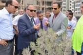 رئيس جامعة دمنهور يطرح مشروعات بيئية لشباب الخريجين …