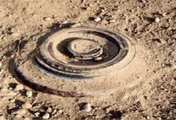 ضبط دانة و 100 طلقة مجهولة المصدر فى شمال سيناء….