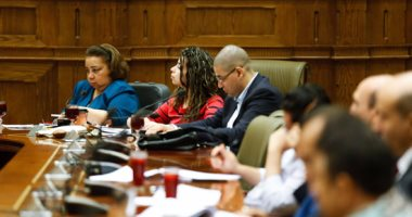 لجنة التضامن بالبرلمان تؤجل مناقشة المادة 34 من قانون حقوق ذوى الإعاقة..