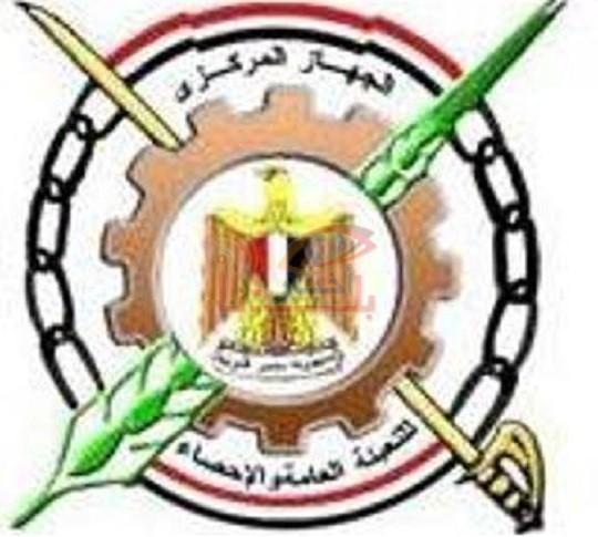 الجهازالمركزي للتعبئة العامة والإحصاء بدء المرحلة الأولى لتعداد مصر 2017.. السبت