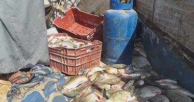 ضبط 3 أطنان سمك و5 أطنان مخلل غير صالح للاستهلاك الآدمى فى الإسكندرية