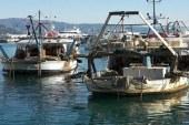 رئيس ميناء دمياط: عمليات تطوير الميناء تتم بالجهود الذاتية