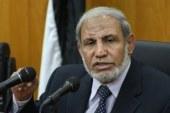 صلاح فهمي: المجلس القومى للمدفوعات يساهم في ضبط الدين الخارجي
