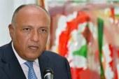 وزير الخارجية: استقرار مصر يعود على العالم
