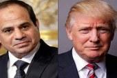 الإخوان تخطط للتظاهر أمام البيت الأبيض أثناء لقاء السيسي وترامب