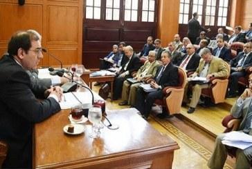 """""""طاقة النواب"""" تؤكد أهمية تنفيذ """"الضبعة النووى"""" لتعزيز قدرات مصر"""