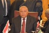 وزير الخارجية: العدوان التركى على سوريا يصل لمرحلة الاحتلال.