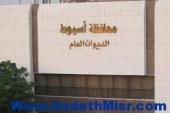 أستاذ القانون الدستورى بجامعه اسيوط : يجب فتح باب الطعون أمام مرشحي الرئاسة فقط