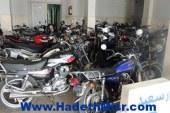 ضبط 320 دراجة نارية لمخالفة أصحابها للقانون بالإسكندرية