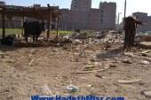 محافظ بني سويف يعقد اجتماعا لبحث تظلمات المواطنين الخاصة بالتخطيط العمراني