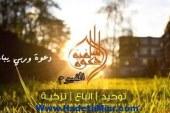 أئمة الدعوة السلفية بالفيوم يحذرون التيارات الاسلامية من الحل الصدامي