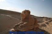 اطلاق حملة تعريفية عن منطقة مدينة ماضي الاثرية بالفيوم