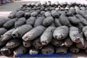 جنايات البحر الأحمر تقضى بحبس شقيقين 10 سنوات لتهريب 2 طن بانجو بالغردقة