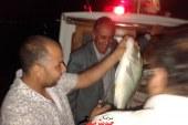 تشكيل لجنة لتحديد فترة هجرة اسماك الشعور لتنمية الثروة السمكية