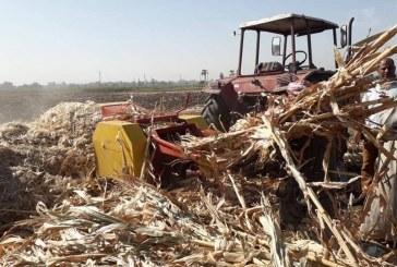 تكثيف الحملات وتحرير 221 محضر وغرامة فورية لحرق المخلفات الزراعية بأسيوط